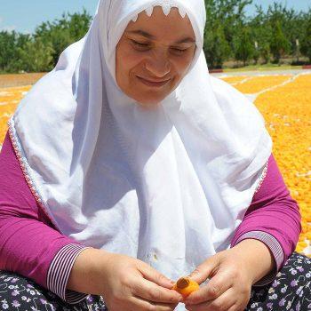 vesta-dried-apricots