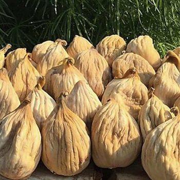 vesta-dried-figs-gallery-05